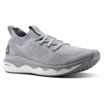 Reebok Floatride RS ULTK Lifestyle Shoes Mens Cloud Grey/Cool Shadow/Skull Grey/White (114WJBDM)