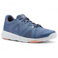 Reebok Flexile Training Shoes Womens Blue Slate/Cloud Grey/Digital Pink/Wht (164OJQSM)