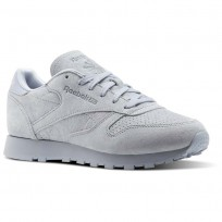 Reebok Classic Leather Shoes Womens Cloud Grey/Rain Cloud (188LKPJA)