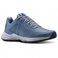 Reebok Astroride Trail Walking Shoes Womens Blue Slate/Cloud Grey/Collegiate Navy (253OLNRB)