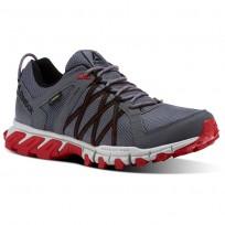 Reebok Trailgrip Walking Shoes Mens Alloy/Skull Grey/Primal Red/Black (426UXGDM)