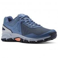 Reebok Ridgeride Trail 3.0 Walking Shoes Womens Blue Slate/Cloud Grey/Collegiate Navy/Digital (743SWQXD)