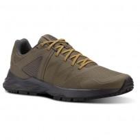 Reebok Astroride Trail Walking Shoes Mens Trek Grey/Coal/Ash Grey/Collegiate Gold (901LQGIP)