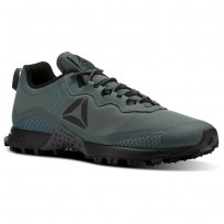Reebok All Terrain Running Shoes Mens Chalk Grey/Black/Ash Grey (953EDFZK)
